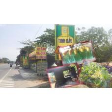 Nghề nấu dầu tràm truyền thống Phú Lộc