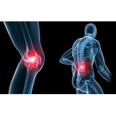 Tinh dầu tràm làm giảm đau nhức xương khớp