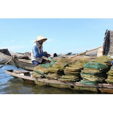 Nghề chợ nổi trên phá Tam Giang