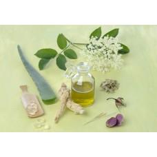 Tinh dầu tràm nguyên chất - một vị thuốc quý